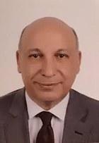 Mohsen Aboulnaga